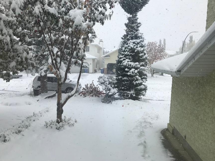 Let it snow, let it snow, let itsnow