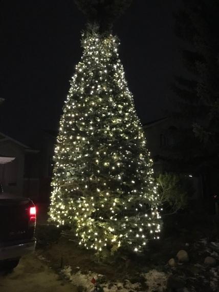net lights from street