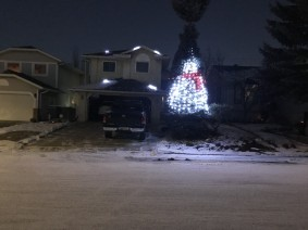 Snow effect with most of House RGBs and snowman on Big Spruce